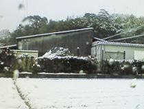 2011021101.jpg