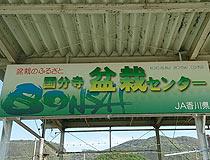 2016042201